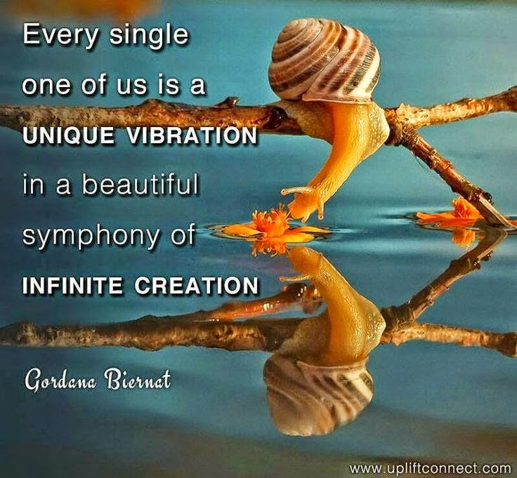 """Every single one of us is a UNIQUE VIBRATION in a beautiful symphony of INFINITE CREATION."" ~ Gordana Biernat Picture of a snail on a branch smelling a water lilly in the water. www.upliftconnect.com"
