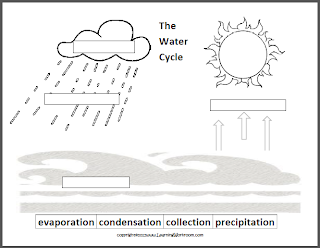 Reading Comprehension - The Water Cycle - Answers.