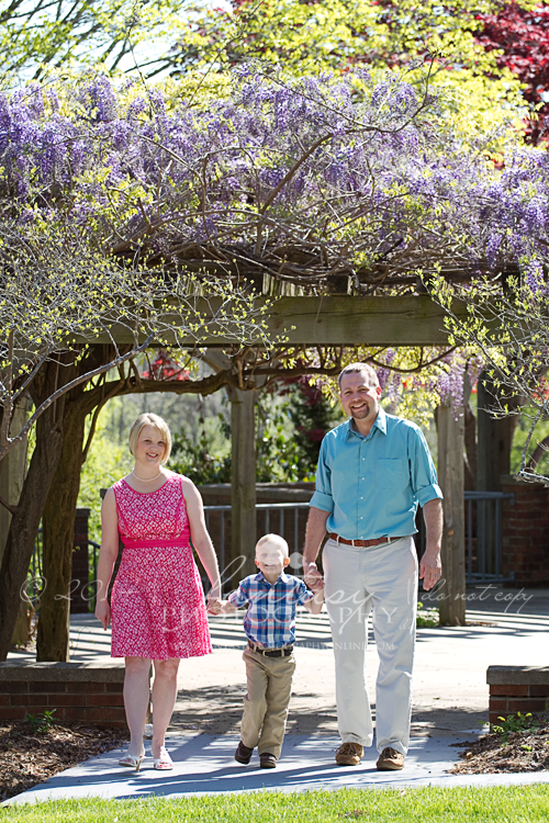 family photographer in winston-salem, nc   family photography