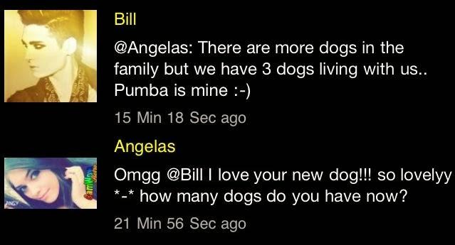 Respostas sobre o Pumba [15/02/2013] 1