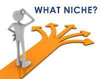 what is your niche ?
