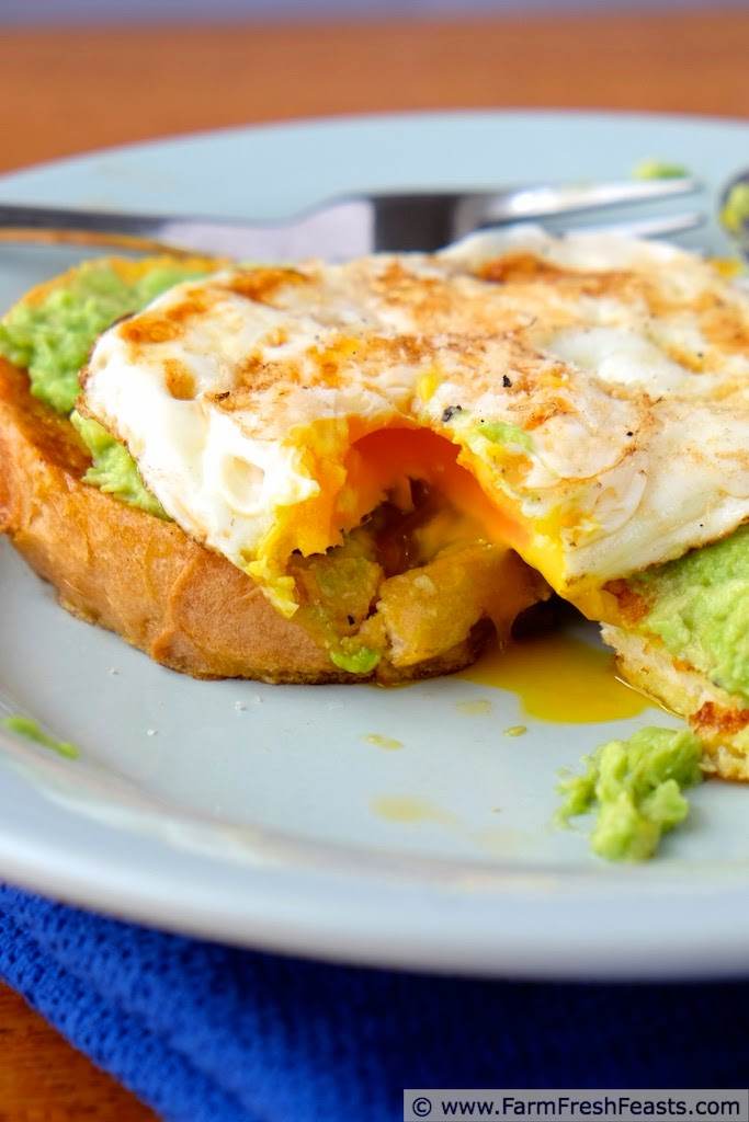 http://www.farmfreshfeasts.com/2015/02/savory-french-toast-with-avocado-and-egg.html