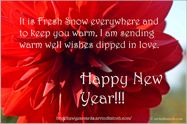 Happy new year, new year card, HD card, Love, dipped, warm, well wishes