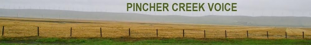 The Pincher Creek Voice