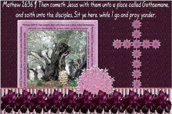 lo 3 - March 2016 - Garden of Gethsemane