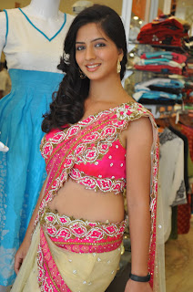 Nisha Shah Spicy Actress in Pink Choli Saree