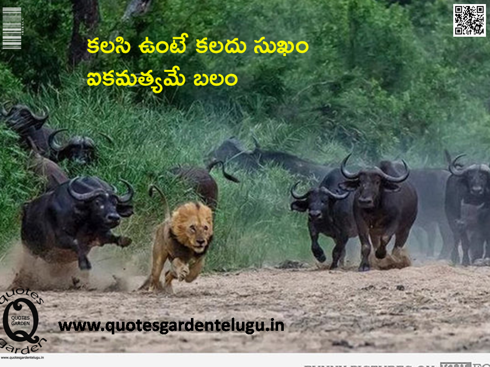 Telugu-Best-Leadership-Quotes-Inspirational-Motivational-images-photoes