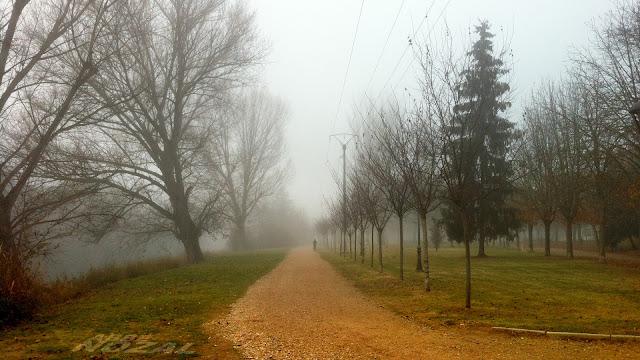 Paseo con niebla, 2013 Abbé Nozal