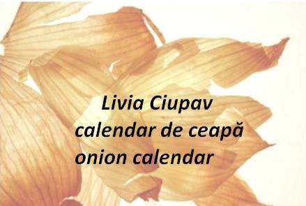 Livia Ciupav - Onion Calendar