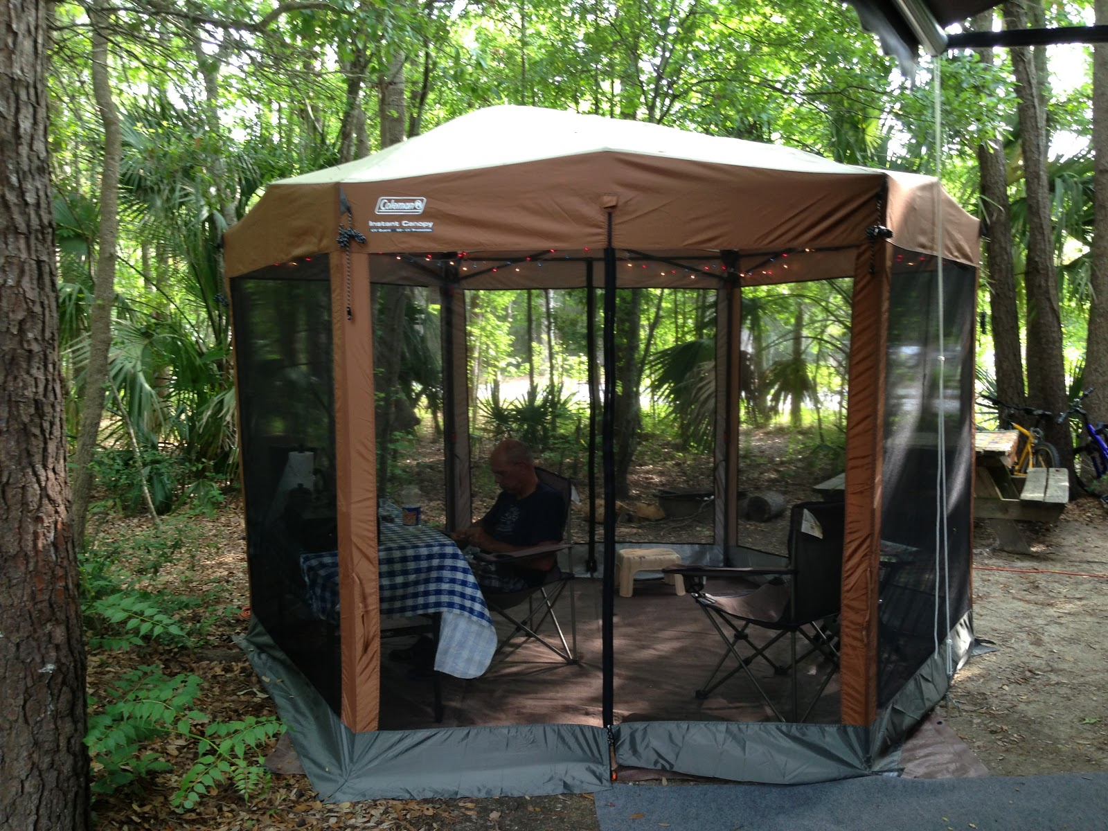 Busy Bees RV Adventures: Coleman 10x12 Screen Canopy