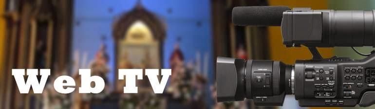 Web TV SJR