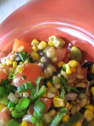 Mexican-Style Kamut Berry, Black Bean and Roasted Corn Salad