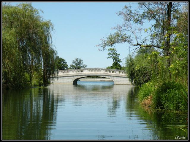 bridge by Art Hill