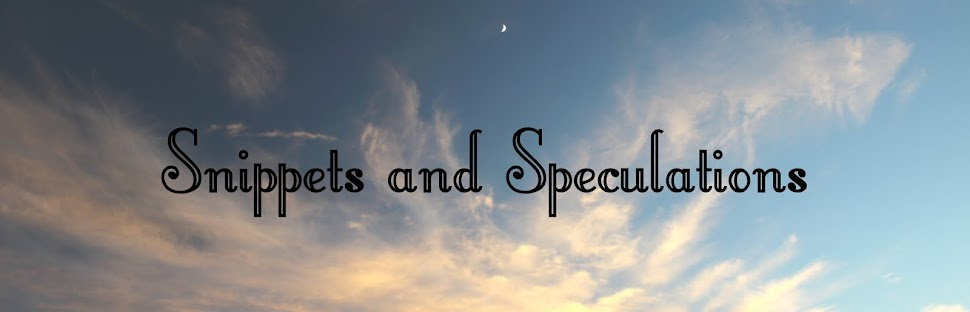 Snippets and Speculations