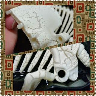dinosaur factivity skeleton closeups