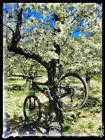 Vuelta al valle de Caderechas (Burgos) IMG_20140413_151413