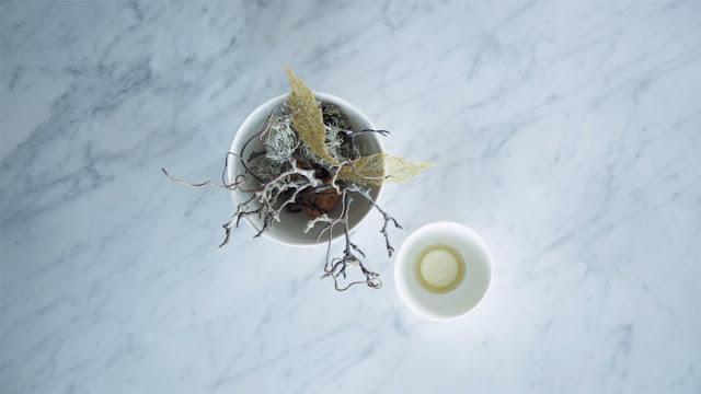 Hojas de alcachofa de Jerusalén con vinagre de centeno y nueces