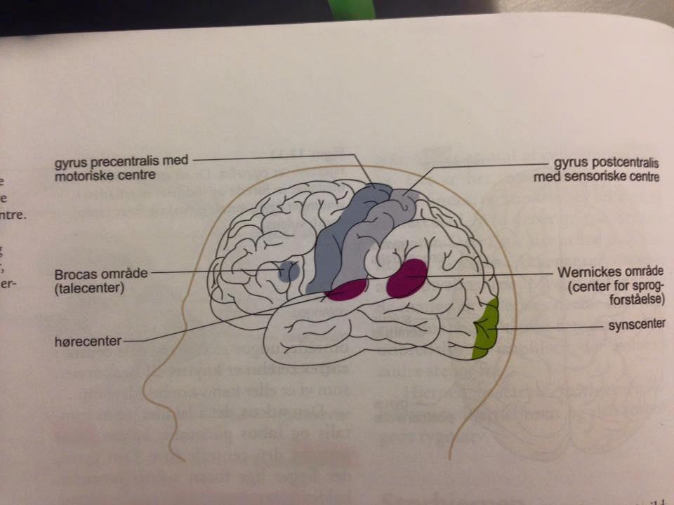 symptomer på for lidt ilt til hjernen