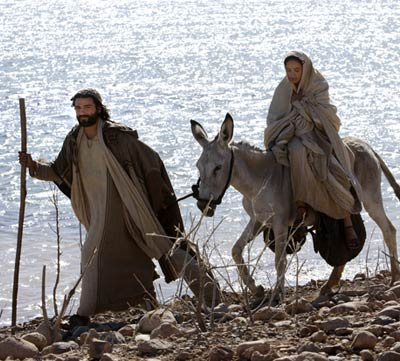 http://2.bp.blogspot.com/-DyvGcp1CiNY/Ttznri7dfZI/AAAAAAAAG44/9j16owNHat4/s1600/donkey+gelilee.jpg