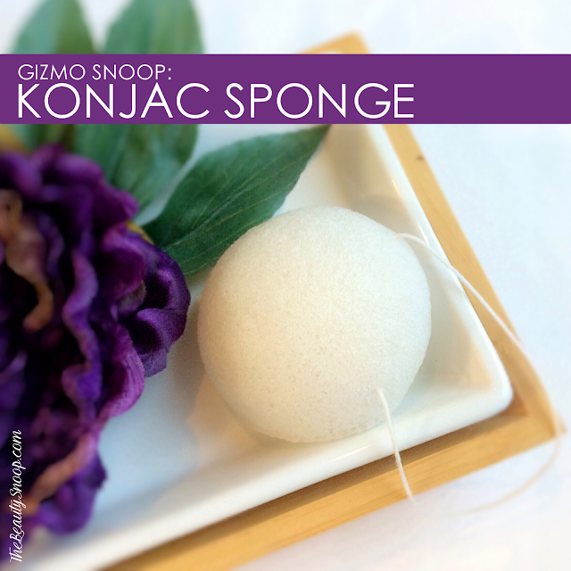 the best konjac sponges, what is a konjac sponge?, konjac sponge 101
