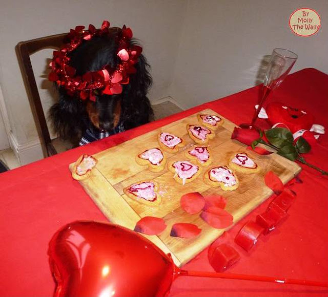 Molly The Wally says, make a start and show some art on my heart shaped cookies.15