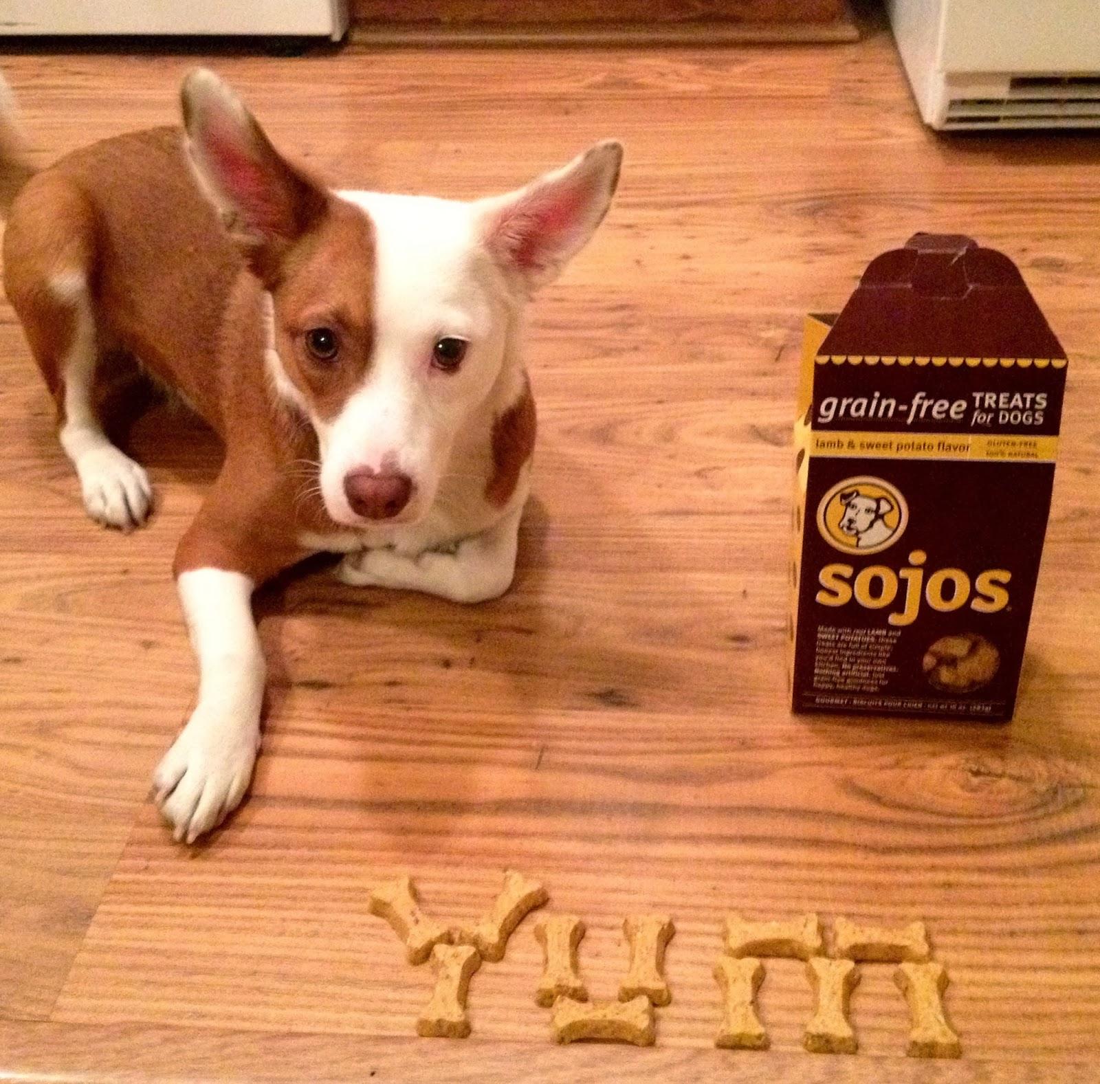Dog Food Advisor Sojos