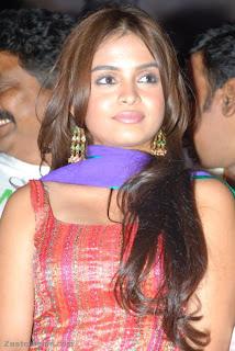 Sheena Shahabadi Spotted Audio Release of Nandiswarudu wearing Sleeveless