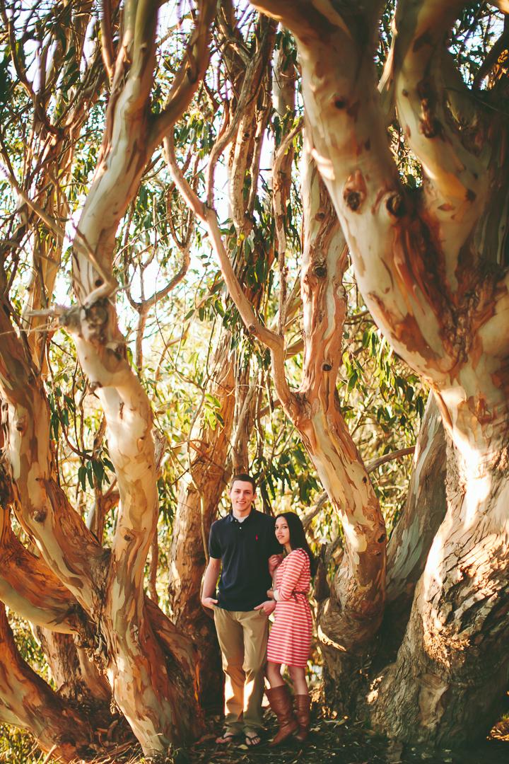 engagement photos among the trees, Santa Cruz, natural bridges state beach santa cruz