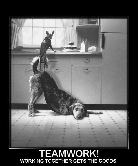 ... quote motivational quotes for motivational quotes teamwork funny