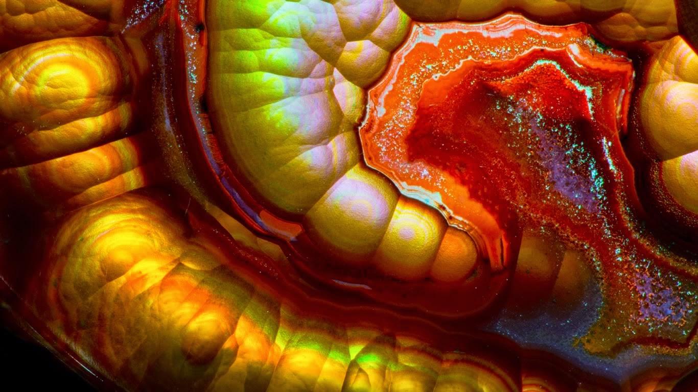 Close-up view of a fire agate gemstone (© Darrell Gulin/Corbis) 149
