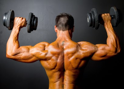 (: How to Get Big Shoulders - The - 26.2KB