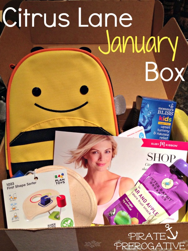 The contents of our January 2014 Citrus Lane box for a 2 year old boy