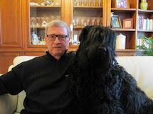 Terrier Nero Russo, caratteristiche della razza