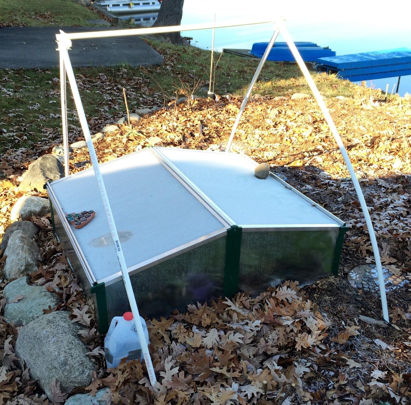 mi lake home garden winter gardening in michigan experiment u0026 38