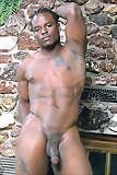 Picture of porno big black asses