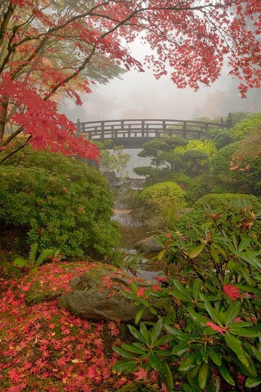 Serenity In The Garden