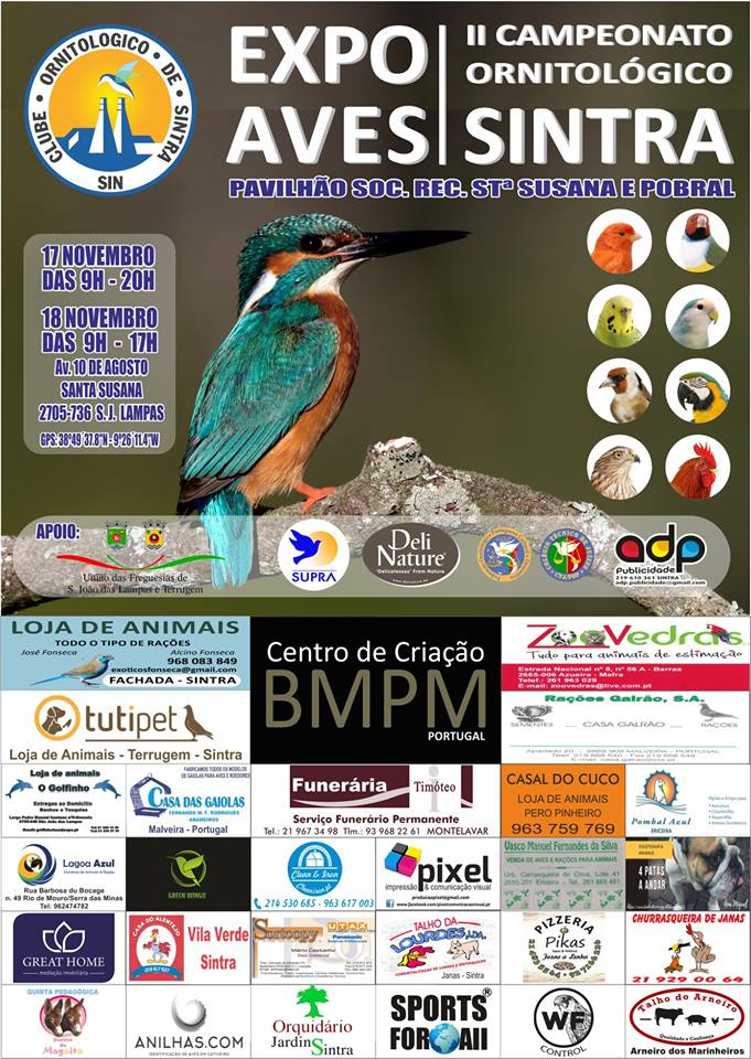 II Campeonato Ornitológico de Sintra 2018