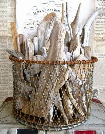 do you collect interesting driftwood pieces when you visit