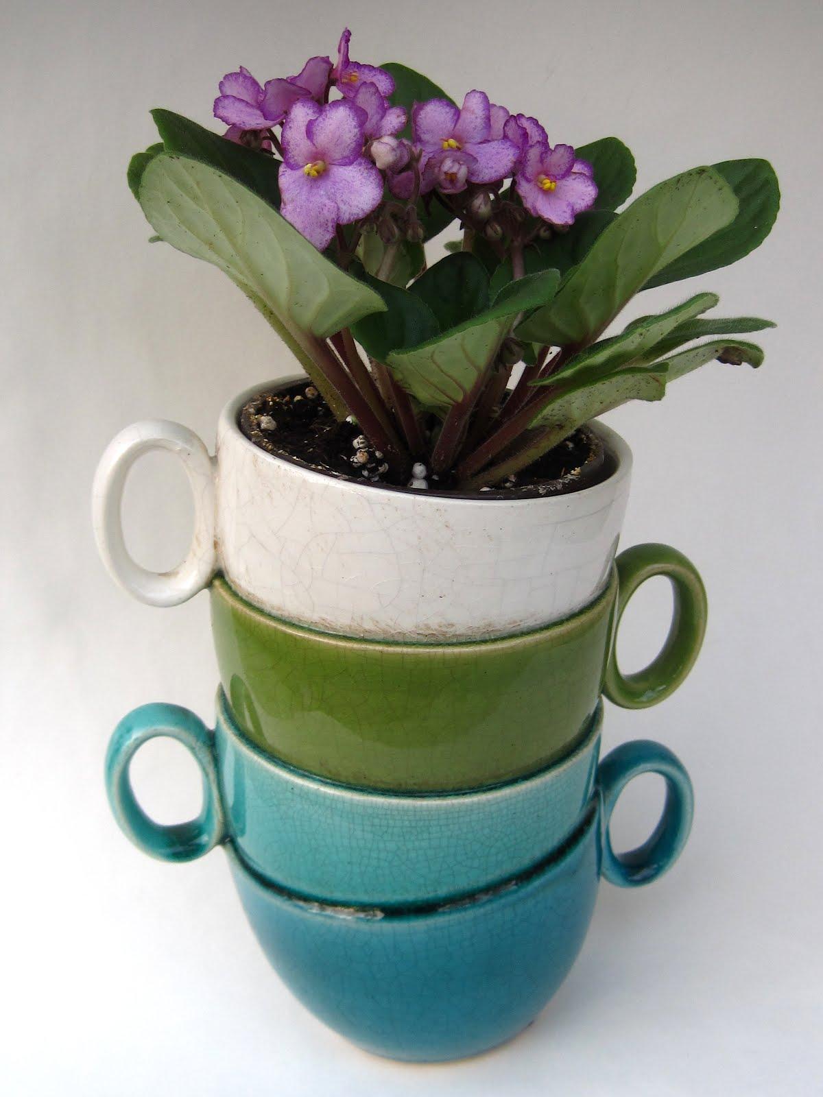 A teacup planter from Hobby Lobby - Tea With Friends: A Teacup Planter From Hobby Lobby