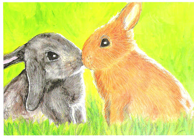 Two Rabbits kissing pic