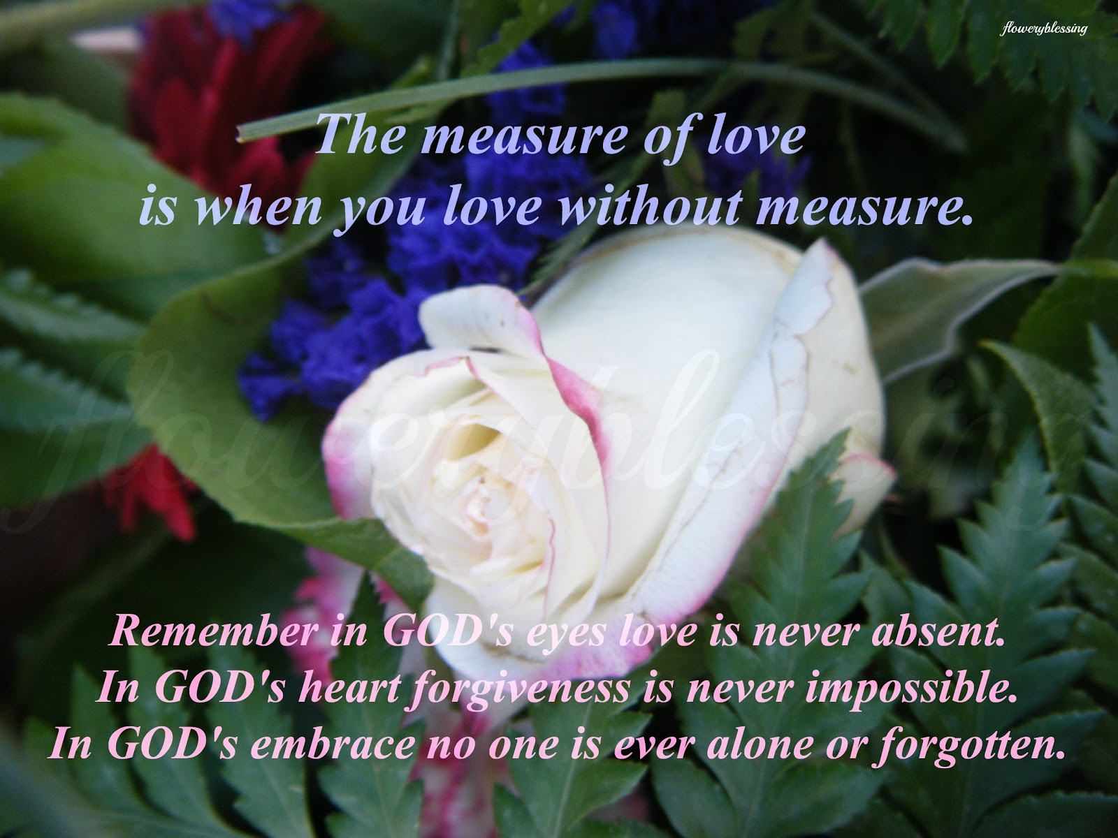 Flowery blessing: the measure of love is when you love without ...