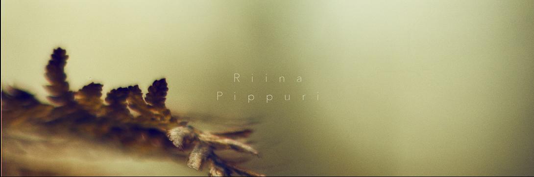 Riina Pippuri Photography