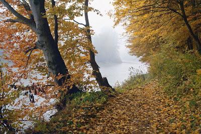 Фото Укринформ: золотая осень