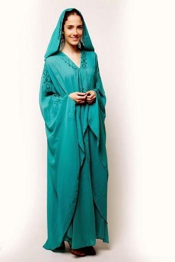 Abaya Dress Fashion 2014