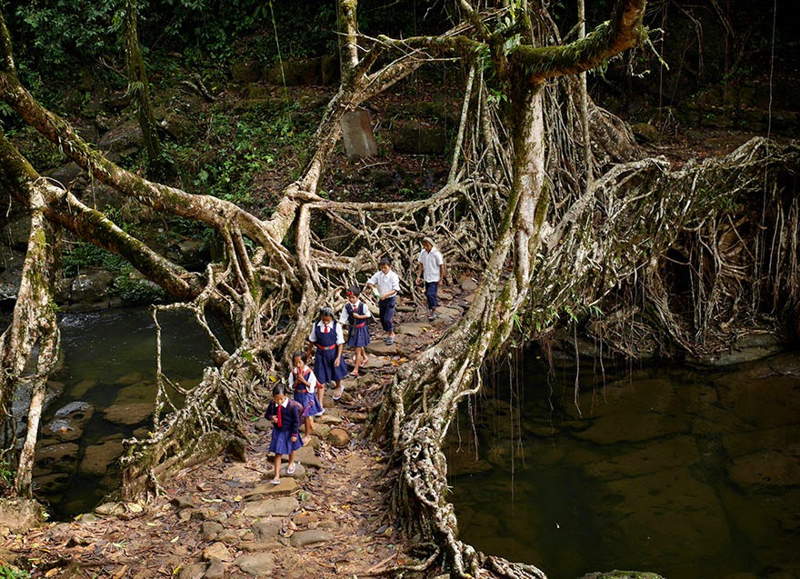 20 Of The Most Dangerous And Unusual Journeys To School In The World - India