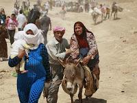 PBB: Ada 13,6 Juta Pengungsi Akibat Perang di Irak dan Suriah