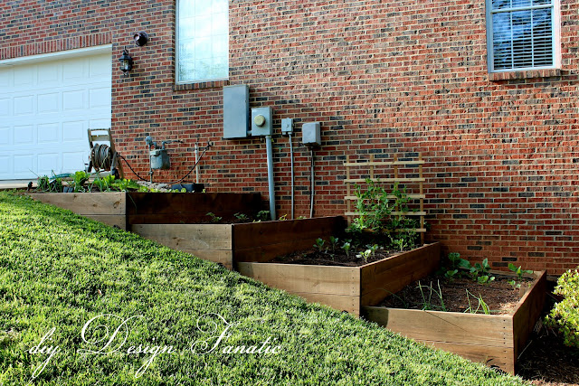 Terraced Backyard Diy : For those who dont remember the raised beds Mr Fanatic built last