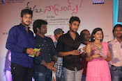Nenu Naa Friends Audio release function-thumbnail-14
