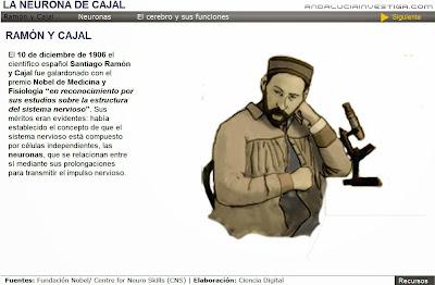 http://www.andaluciainvestiga.com/espanol/cienciaAnimada/sites/neurona/neurona.swf
