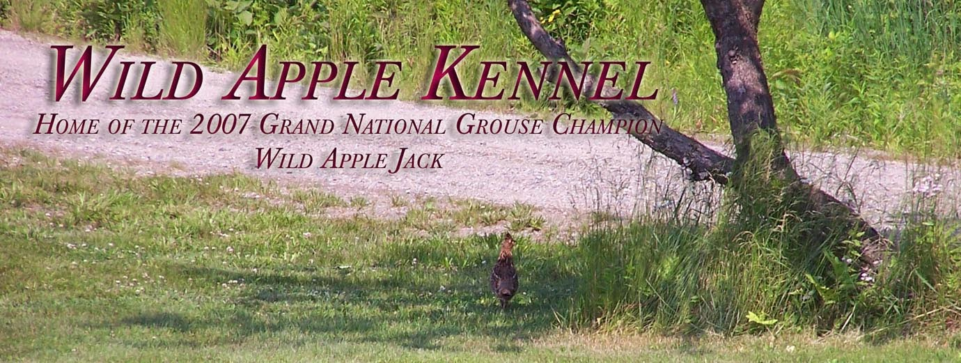 Wild Apple Kennel and Guide Service